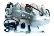 pitbike motor Stomp Lifan 125